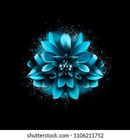Blue Aster flower, on a black background, with spray paint in the background