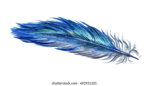 Blue bird feather, watercolor drawing on white background, isolated with clipping path.