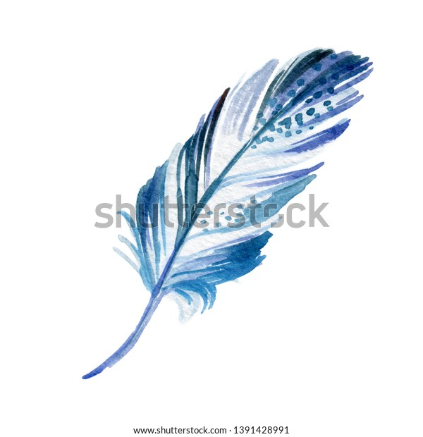 Blue Bird Feather Wing Watercolor Illustration Stock