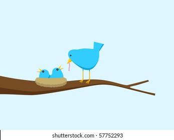 Blue Bird Feeding Hungry Chicks