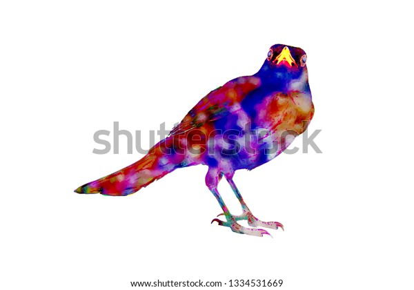 Blue Bird Happiness Morris Maeterlinck Drawings Stock