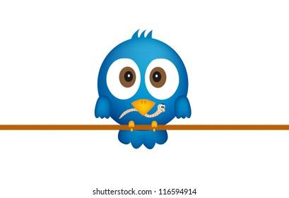 Blue bird with worm