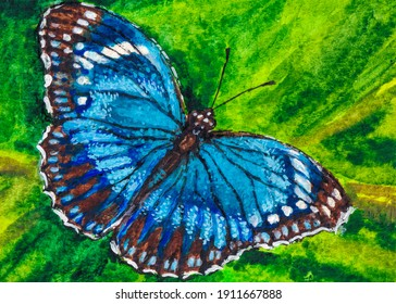Blue butterfly. Insect on green leaf. Watercolor painting. Acrylic drawing art.