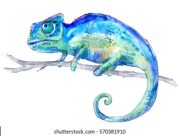 Blue chameleon on a branch. Watercolor hand drawn illustration.