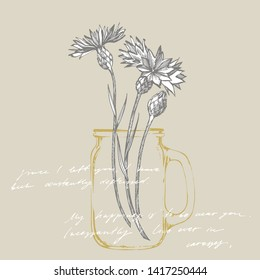 Blue Cornflower Herb or bachelor button flower bouquet isolated on white background. Set of drawing cornflowers, floral elements, hand drawn botanical illustration. Handwritten abstract text wallpaper