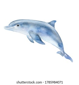 Blue dolphin isolated on white background. Watercolor. Illustration. Template. Close-up. Clipart. Greeting card design. Sea life, marine animals. Ocean day. Children's room, baby shower. Clipart