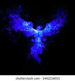 Blue fire  bird isolate on black