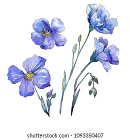 Blue flax. Floral botanical flower. Wild spring leaf wildflower isolated. Aquarelle wildflower for background, texture, wrapper pattern, frame or border.