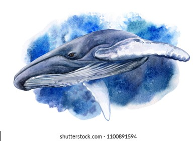 Blue or humpback whale in sea waves or in the ocean isolated on white background. Watercolor. Illustration. Template. Clip art. Close-up.