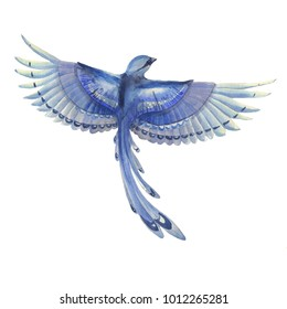 Blue jay bird flying. Watercolor hand drawn illustration. Blue feathers cute bird character. Winter colors.
