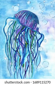 Blue jellyfish watercolor illustration drawing