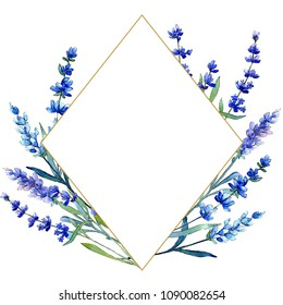 Blue lavender. Floral botanical flower. Wild spring leaf wildflower frame in a watercolor style. Aquarelle wildflower for background, texture, wrapper pattern, frame or border.
