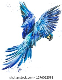 blue lear macaw. tropical bird watercolor illustration. Blue parrot flying. Brazilian wildlife fauna. wild nature