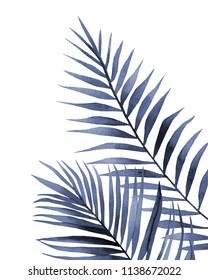 Blue leaves. Palm leaves. Watercolour illustration on white.