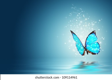 Blue Magic butterfly over water