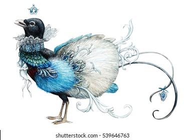 Blue paradise bird