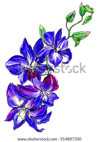 Royalty Free Stock Illustration Of Blue Purple Orchid Flower Wedding