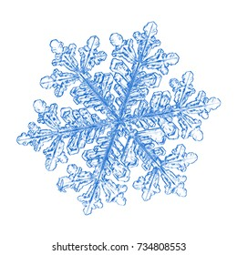 Blue snowflake on white background. This sketch based on macro photo of real snow crystal: large stellar dendrite with fine hexagonal symmetry and six long, elegant arms with many side branches.