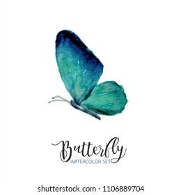 blue turquoise watercolor butterfly paint set collection isolated on white background fly colorful spring,beauty watercolour illustation paint hand drawn