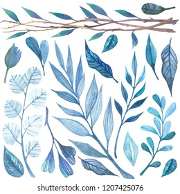 Blue watercolor branches with leafs isolated set on white background. Drawn Pastel Colors Floral Branch. Design for paper celebrating postcard poster textile