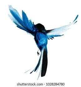 Blue watercolor hand drawn flying bird 46