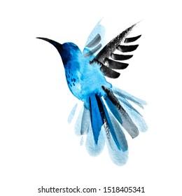 Blue watercolor hand drawn flying hummingbird.