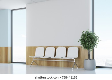 Blue and wooden hospital lobby with windows and white chairs for patients waiting for the doctor visit. A potted tree. 3d rendering mock up