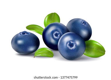 Blueberries isolated on white background. Quality realistic , 3d illustration