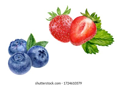 Blueberry strawberry hand drawn watercolor illustration isolated on white background