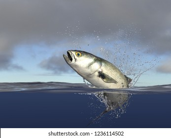 bluefish jumping, half of it in water, speed and action with jumping. Cloudy background, 3d render
