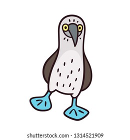 Blue-footed booby, funny cartoon bird drawing. Isolated illustration.