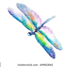 The blue-green dragonfly, watercolor illustration isolated on white background.