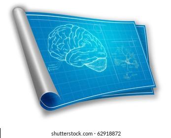 Blueprint of an brain