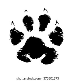 Blurred animal footprint isolated on white background