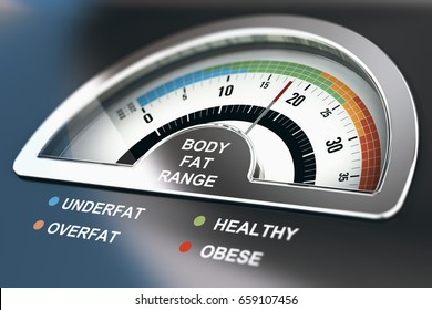 Body fat range calculator with the words underfat, healthy, overfat and obese. 3D illustration.