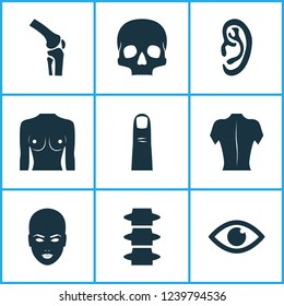 Body icons set with eye, finger, breast and other skeleton elements. Isolated  illustration body icons.