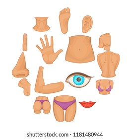 perineum images stock photos  vectors  shutterstock