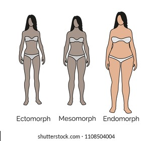 Body type, small frame, medium frame, large frame, ectomorph, endomorph, mesomorph.