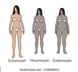 Body type, small frame, medium frame, large frame, ectomorph, endomorph, mesomorph.