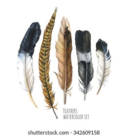 Boho style. Hand drawn watercolor illustration with different sketch feathers on white background. Hippie design elements.