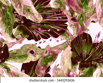 Bold Abstract Floral Pattern. Big Jungle Seamless Print on Brown, Black Background. Big Jungle Summer Aquarelle Lilikoi Endless Background. Modern Bold Abstract Floral Pattern.