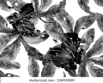Bold Floral Design. Large Jungle Seamless Print on Black and White Background. Large Hawaiian Spring Aquarelle Maracuja Endless Background. Artistic Bold Floral Design.
