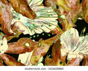 Bold Floral Pattern. Large Exotic Seamless Print on Brown, Black Background. Large Jungle Summer Aquarelle Maracuja Endless Background. Bold Florals Design.