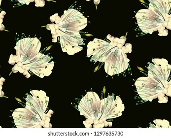 Bold Floral Print. Big Tropical Seamless Print on Black and White Background. Big Hawaii Spring Watercolor Maracuya Endless Background. Trendy Bold Floral Print.