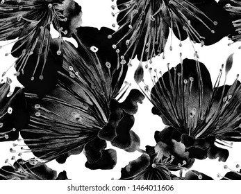 Bold Floral Print. Large Exotic Seamless Print on Black and White Background. Big Exotic Summer Aquarelle Lilikoi Endless Background. Trendy Bold Floral Print.