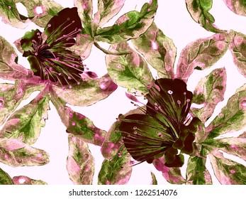 Bold Floral Print. Large Hawaii Seamless Print on Brown, Black Background. Large Tropical Spring Aquarelle Lilikoi Endless Background. Trendy Bold Floral Print.