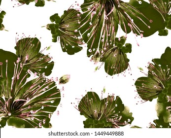 Bold Flower Pattern. Large Exotic Seamless Print on Black and White Background. Large Tropical Spring Watercolor Lilikoi Endless Background. Modern Bold Flower Pattern.