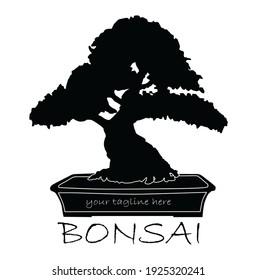 bonsai plant logo, black silhouette on white background