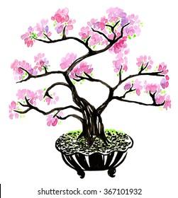 Bonsai tree sakura watercolor