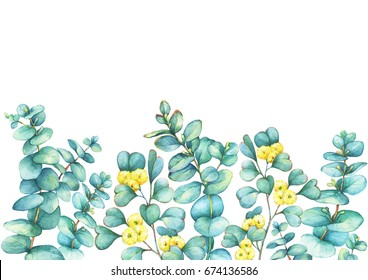 Border with a branch of silver-dollar eucalyptus  (Eucalyptus cordata) and Eucalyptus websteriana  (Heart-leafed), isolated on white background. Watercolor hand drawn painting illustration.